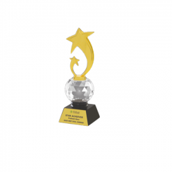"Acrylic, Crystal and Metal Trophy L 10"" (CGT- 9358)"