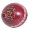 Full-Size Cricket Ball