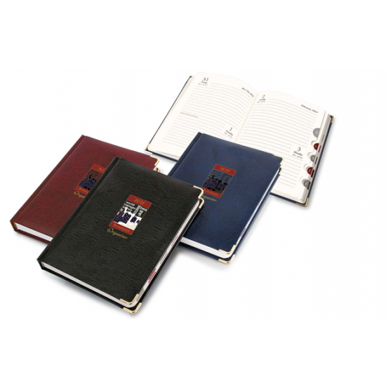 Business Organiser - Diary (CGP-2817)