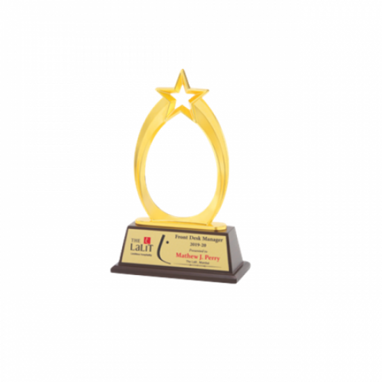 """Wooden and Metal Trophy L 10.5"""" (CGT- 9359)"""