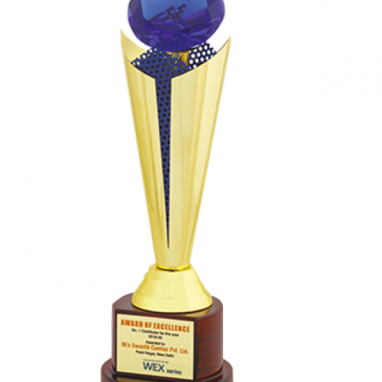 "Wooden Trophy : Size: L 14""(CGT- 357)"