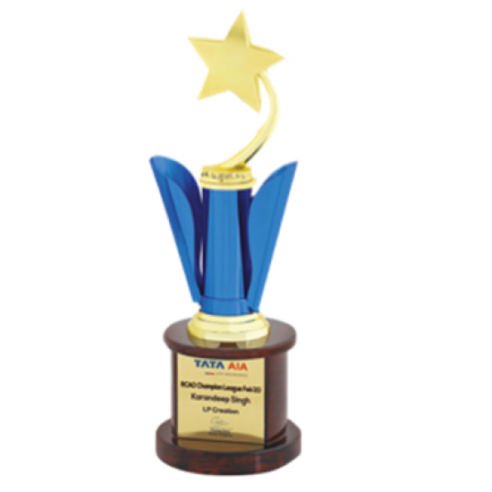 """Wooden and Metal Trophy : Size: L 13.5"""" (CGT- 380)."""