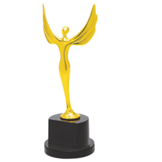 "Wooden and Metal Trophy : Size: L 13"" (CGT- 9328)"